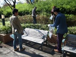 クリーンおおさか2010 清掃活動の様子