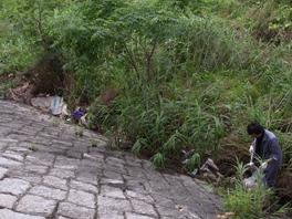 木津川クリーンアップ 清掃活動の様子