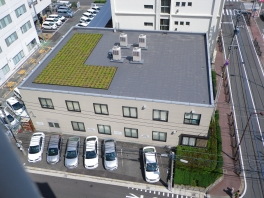 福岡支店本館屋上の緑化整備の様子①