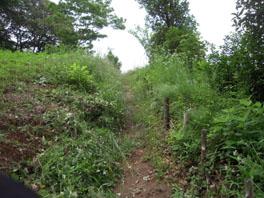 ふるさと緑地の除草前