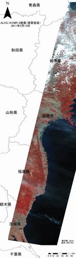 被害直後の画像(赤外カラー)