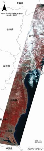 被害前の画像(赤外カラー)