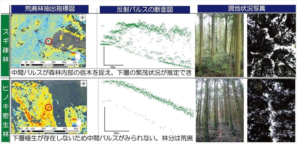 図4 荒廃林抽出指標図と反射パルス断面、現地状況との対応