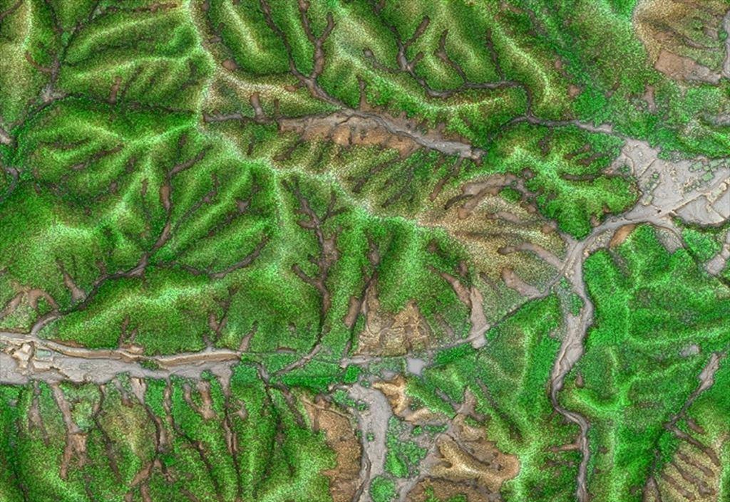 図8 航空レーザ計測成果から作成した樹高階と崩壊地の抽出  樹高の高いところほど緑色を濃く表現